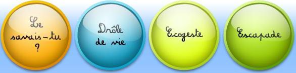 Ecolokid2
